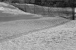 snow_fence-782321