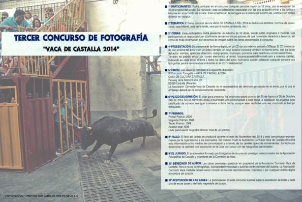 CARTEL BASES 2014, FORMATO WEB